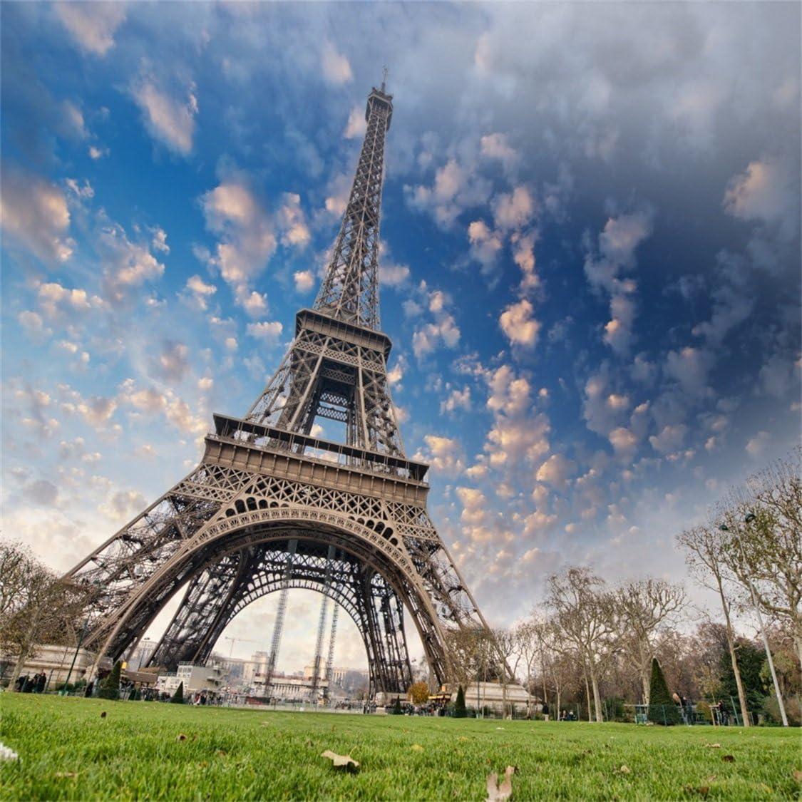 5x7ft Ooozkken Eiffel Tower Background Theme Newborn Indoor Photography Studio Photography