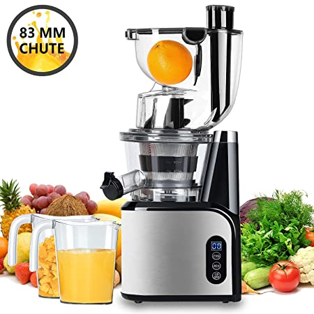The 8 best slow juicer under 200