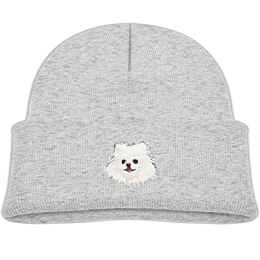 082b9d32f98 hanfjj kefdk Knitted Hats White Pomeranian Painting Youth Beanies Cap  Unisex Baby Warm