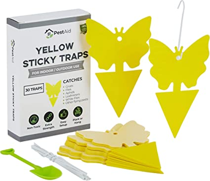 20 Sticky Trap Fruit Fly Gnat Trap Yellow Sticky Bug Trap For Indoor Outdoor