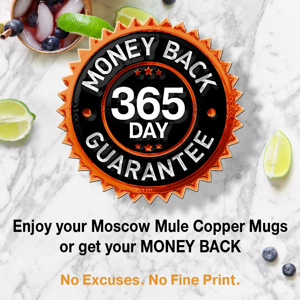 Moscow Mule Copper Mugs - Set of 4-100% HANDCRAFTED - Food Safe Pure Solid Copper Mugs - 16 oz Gift Set with BONUS: Highest Quality Cocktail Copper Straws and Jigger! by Benicci (Image #7)