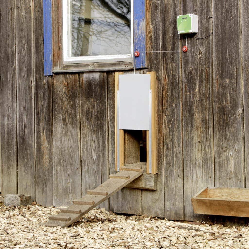 Kerbl Set de puerta automática para gallinero 300x400 mm