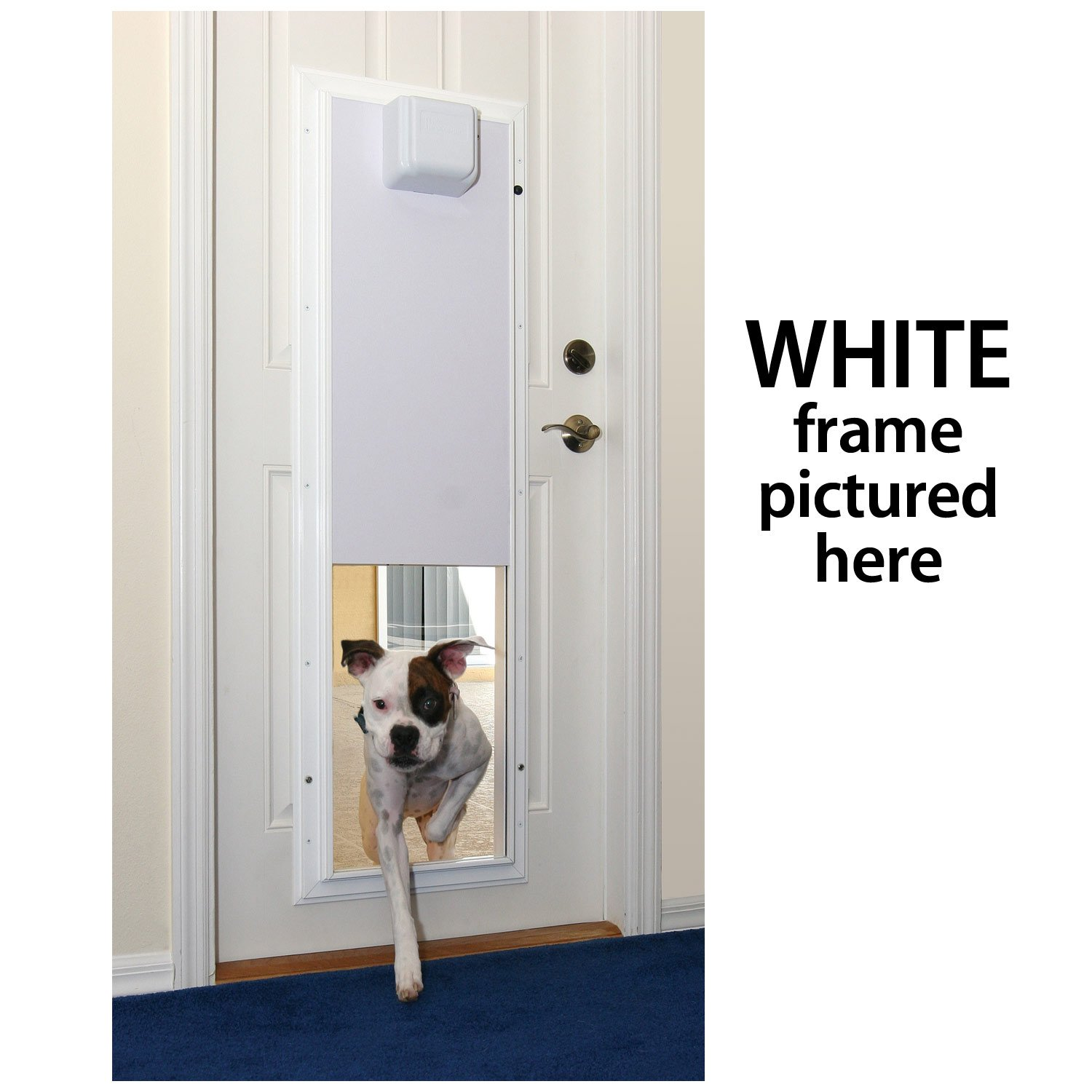 Amazon Plexidor Performance Pet Doors Electronic Dog Door