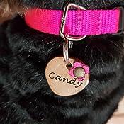 Placa Identificación para Perro y Gato, Etiqueta Identificativa ...
