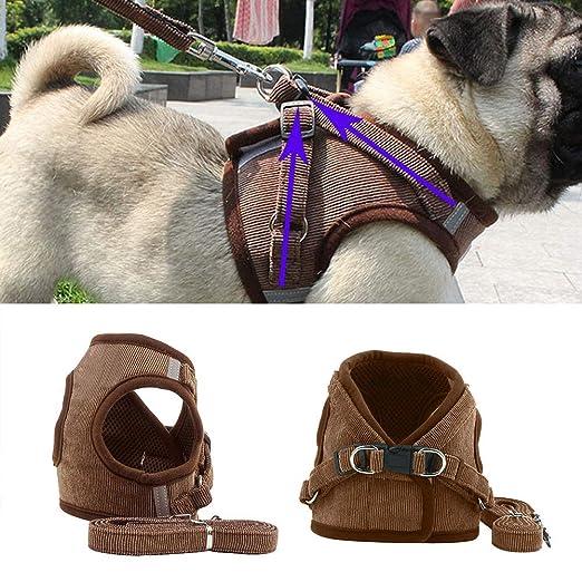 CHW Accesorios para mascotas Arnés para perros lindo Cachorro Moda ...