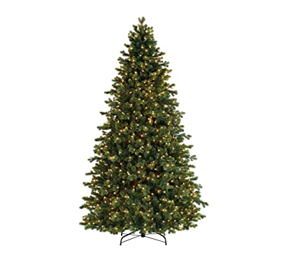 Image Unavailable - Amazon.com: Bethlehem Lighting GKI Pre-Lit Savannah Spruce