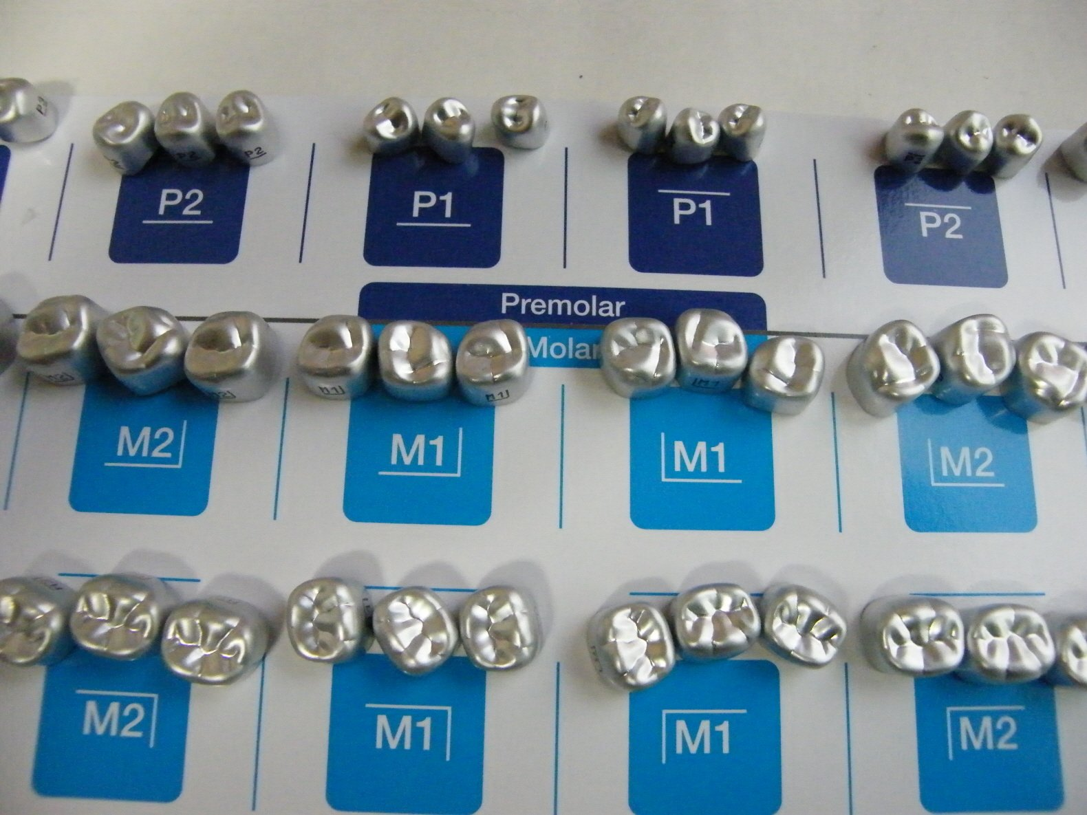 54PCS:Dental Aluminum Temporary Crown (Premolar 6sizes + Molar 12sizes) *3EA by SHINHEUNG (Image #1)