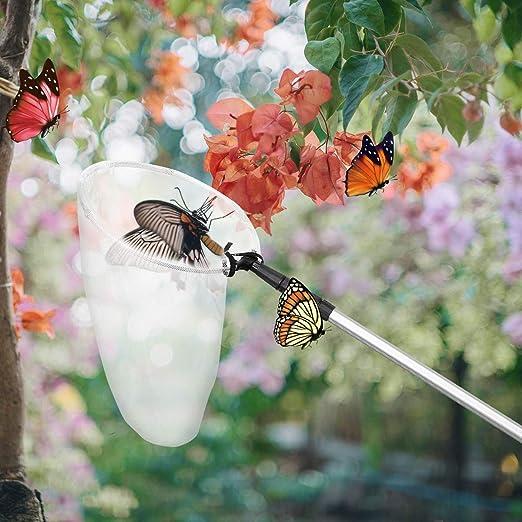 UKCOCO Pesca extensible mariposa mariposa libélula insectos neta, aleación de aluminio poste de mango telescópica red de aterrizaje alargar Tuck Net para niños adultos: Amazon.es: Industria, empresas y ciencia