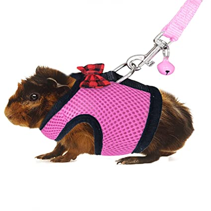 44437c359234 RYPET Guinea Pig Harness and Leash - Soft Mesh Small Pet Harness with Safe  Bell, No Pull Comfort Padded Vest for Guinea Pigs, Ferret, Chinchilla and  ...