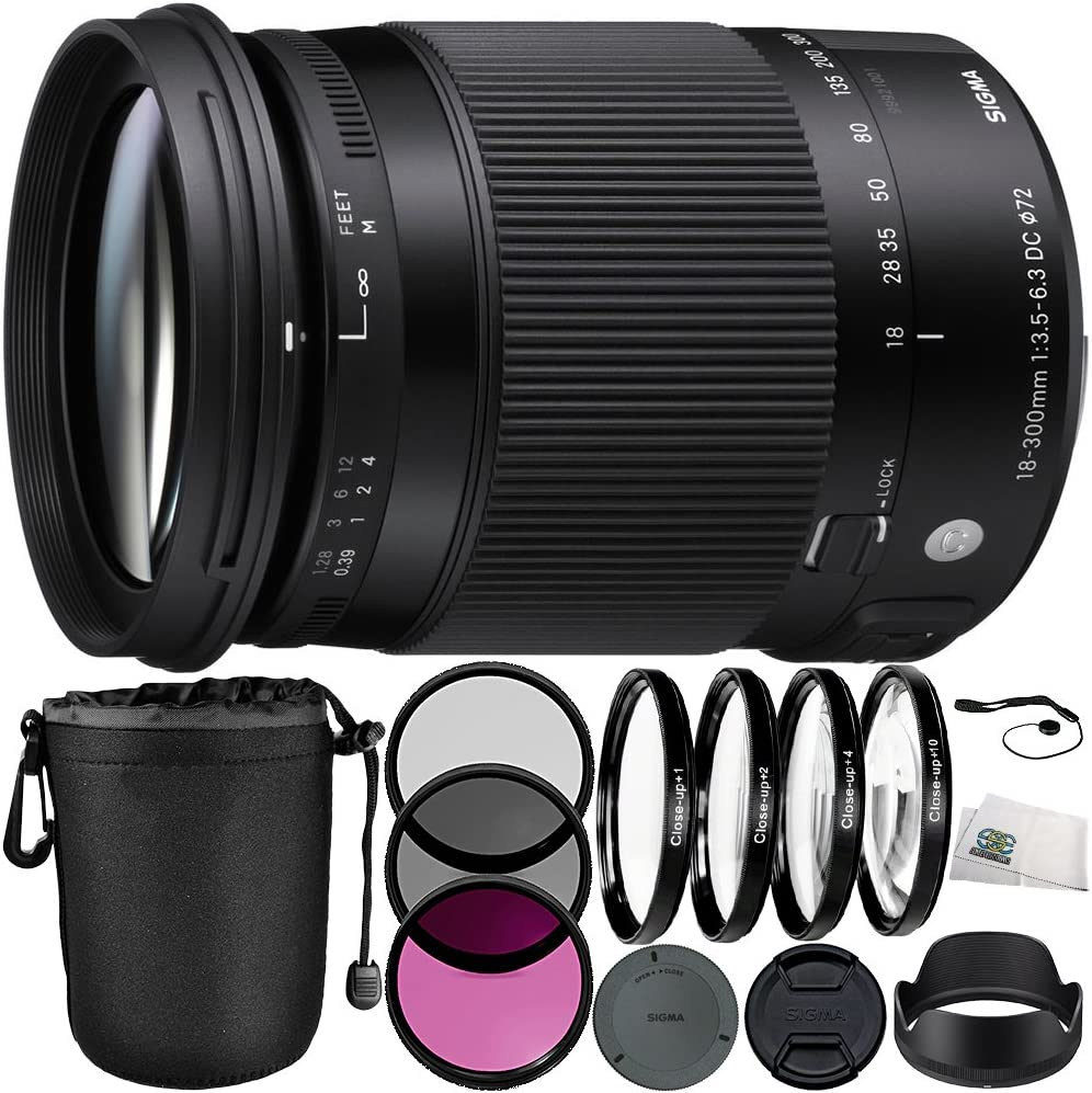 Sigma 18 300 Mm F 3 5 6 3 Dc Macro Os Hsm Contemporary Kamera