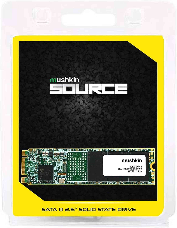 2280 MKNSSDSR250GB-D8 3D TLC 6Gb//s 250GB SATA-III M.2 SSD Mushkin Source M.2 Internal Solid State Drive