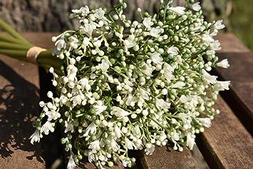 Kunstlicher Blumenstrauss Schleierkraut Strauss 6 Stiele Hochzeit