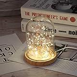 Amazon Com Globe Ice Lantern Kit Home Amp Kitchen