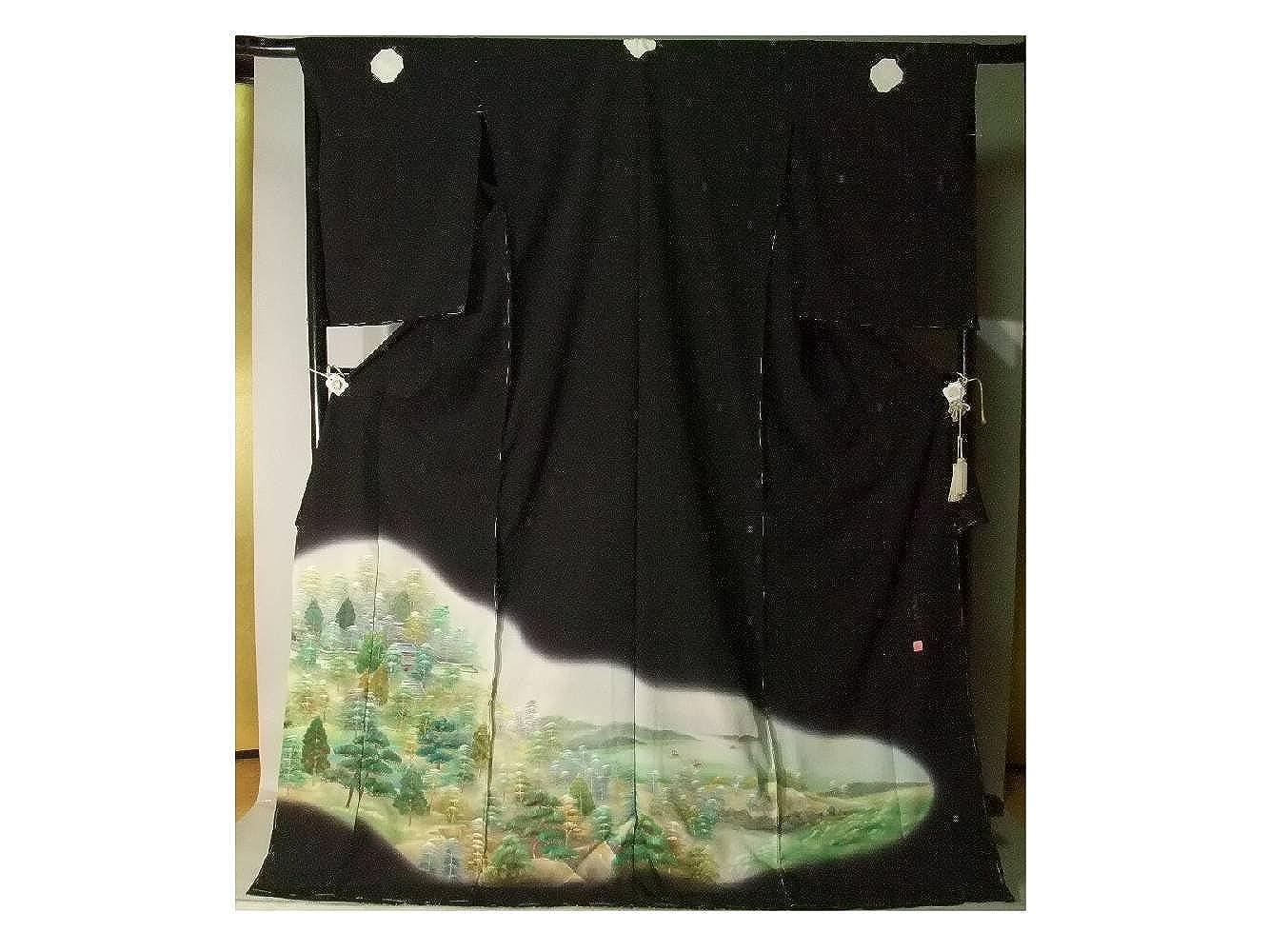 留袖 黒留袖 お仕立て付き 上品な手描山水文様柄 京友禅 比翼仕立て to097s B079TKGTXG