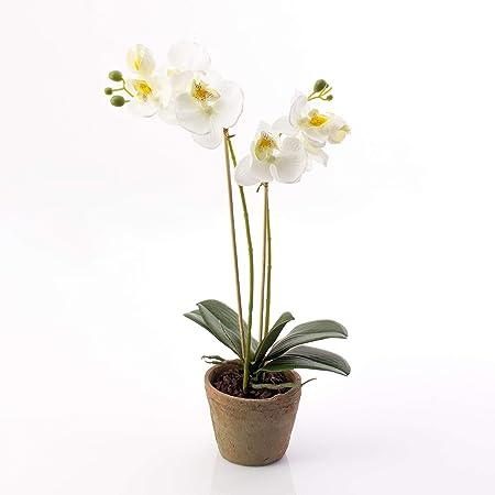 orchidea fiori schema gratis tutorial uncinetto crochet | 450x450