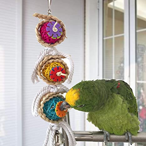 Amazon Com Bird Toys Bird Toys Parrot Swing Cage Ball