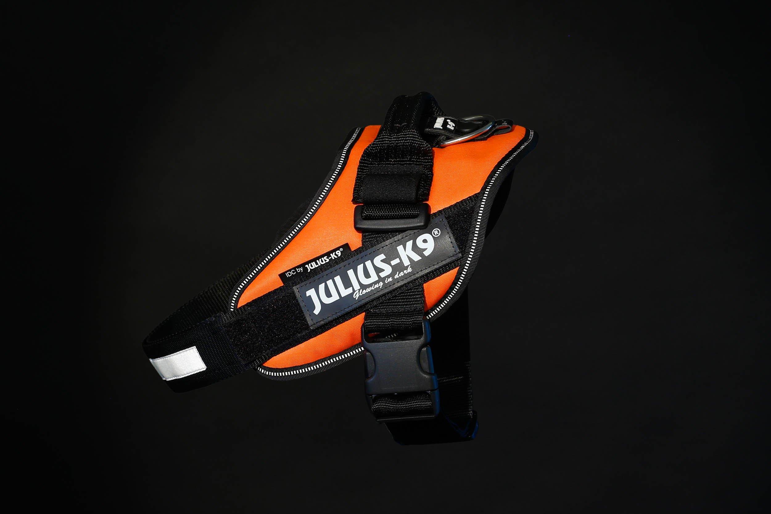 Julius-K9 16IDC-for-0 IDC Power Harness, Size: 0 (58-76cm/23-30), UV Orange