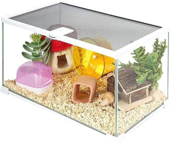 HLZY Cause Portable Gerbil Casa Pequeña Casa Hamster Jaula Hamster Casa de Cristal Transparente la Caja de alimentación de la mordedura Erizo Jaula Oso de Oro Organizador (Size : 31 * 21 * 20cm)