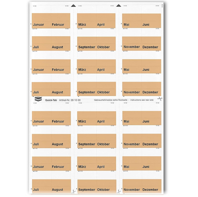 Classei Daten-Tabe mit Eindruck: Januar Farbe: hellbraun als Kennzeichnungs-Tab Dezember