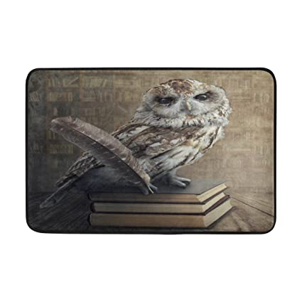 FunnyLife Hipster Owl Sitting On Book Library Bookshelf Doormat Indoor Outdoor Entrance Floor Mat Bathroom