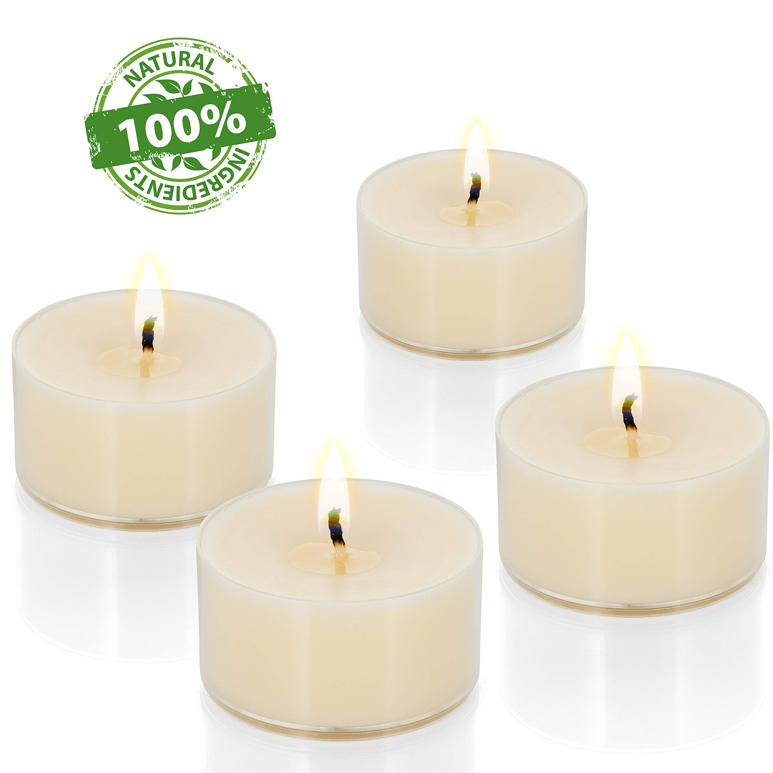 100 Natural Tea Light Candles Ivory Pure Canola Wax Paraffin Free 5 Hour Eco-Friendly Unscented in Clear Plastic Cup Holders Dye Free Poured in USA... by Candle Charisma
