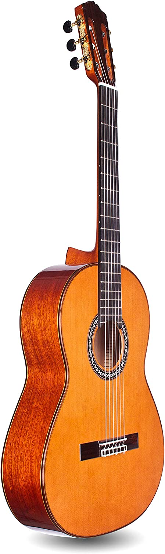 Cordoba Guitars C9 Parlor CD/MH 7/8 Size Classical Guitar