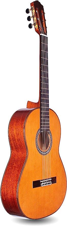 Cordoba C9 Parlor Guitarra Acústica con Cuerdas de nailon,: Amazon ...