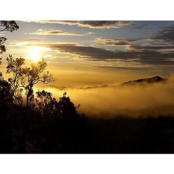 Fototapete Sonnenuntergang Vlies Wand Tapete Wohnzimmer Schlafzimmer ...