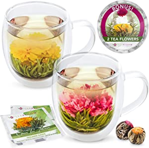 Teabloom Extra-Large (18oz / 550ml) Insulated Double Wall Glass Mugs & Blooming Tea Flowers (Set of 2 Mugs + 2 Flowering Teas) - Twin Harmony Flowering Tea Gift Set