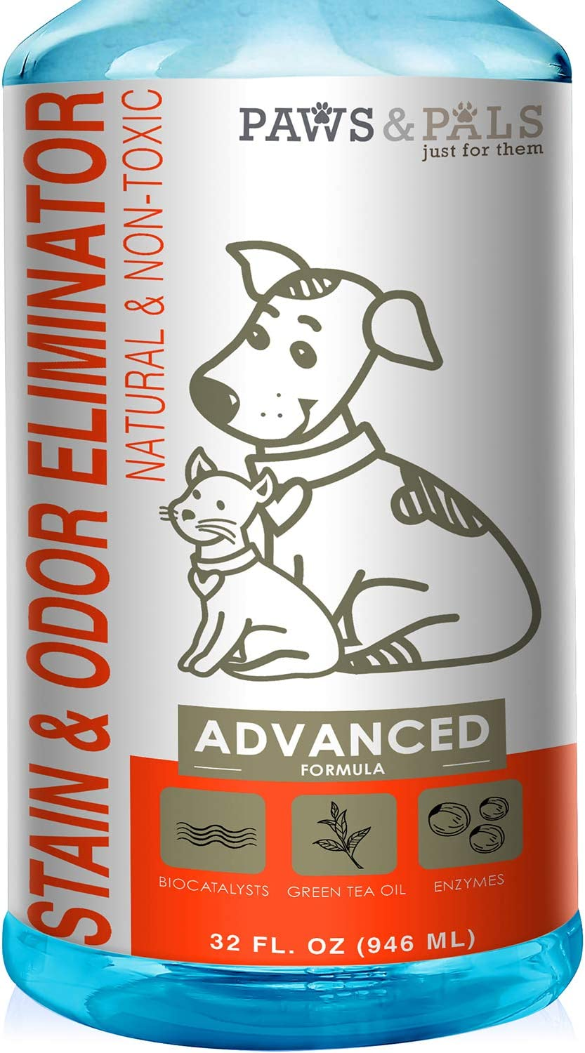 Pet Stain Enzyme Cleaner And Odor Eliminator 32oz Spray Dog Urine Remover For Carpet Rug Hard Wood Floor Stains Enzymatic Destroy Animal Puppy