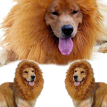 Wilk Peluca de león Grande para Mascotas, para Perro, Navidad, Halloween, Fiesta