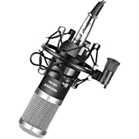 Neewer NW-800 Pro Cardioid Studio Condenser Microphone Set with Shock Mount, Ball-type Anti-wind Foam Cap, 3.5mm to XLR Audio Cable for Recording Broadcasting YouTube Live Periscope(Black/Silver)