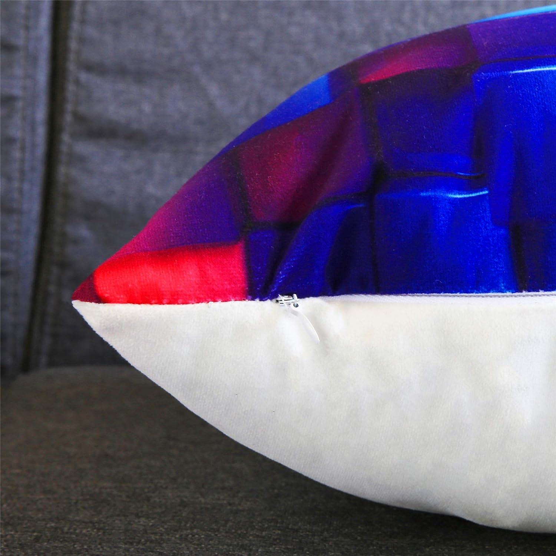 Topfinel Federe Cuscini Moda Stampa in Microfibra Morbidi Quadrati Decorativi in Divano Letto Sedia Giardino Camera da Letto Un Serie Include 4 Pezzi 45x45cm
