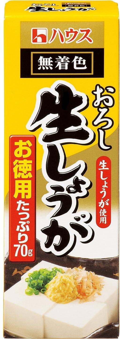 のためにアフリカ人リハーサルしょうが粉末 100g×3袋(Ginger 生姜)国内粉末蒸気殺菌加工 (蒸気殺菌工程 )ピュア100% [02] NICHIGA(ニチガ)