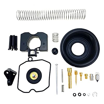 Rebuild Kit for Harley Davidson Sportster 40mm XL883 XL1200 Carburetor Keihin CV 27006-88 27421-99C 27490-04: Automotive