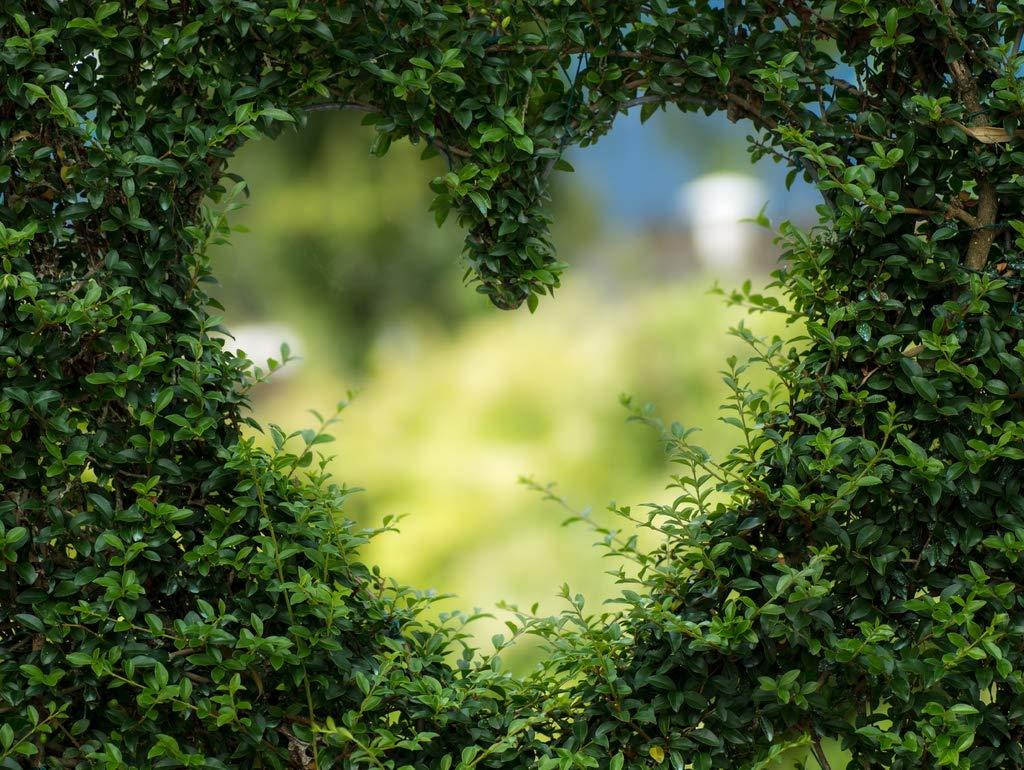Lais Jigsaw Heart in bush 2000 pieces