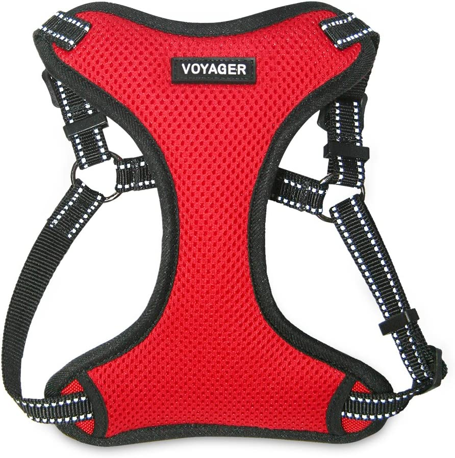 Best Pet Supplies Voyager by Completamente Regolabile Step-in Mesh Imbracatura con Piping Riflettente 3/m