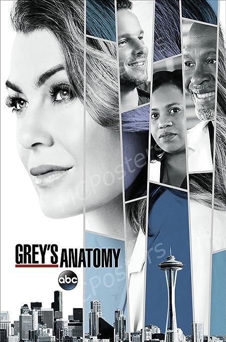 Amazon.com: MCPosters Greys Anatomy TV Show Series Poster GLOSSY ...