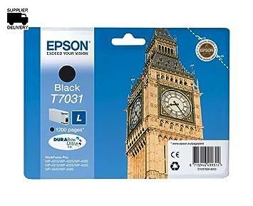 Epson T7031 cartucho de tinta - Color: Negro: Amazon.es ...
