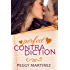 Perfect Contradiction (The Contradiction Series Book 2)