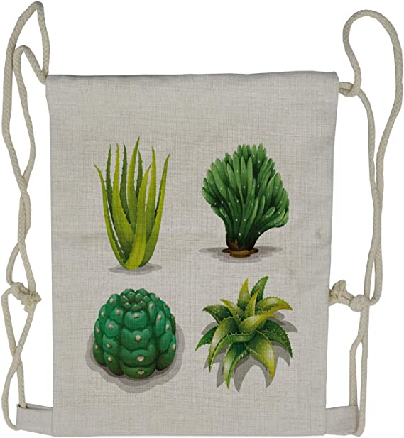 Large Weekender Carry-on Ambesonne Plant Gym Bag Cactus and Suculent Print