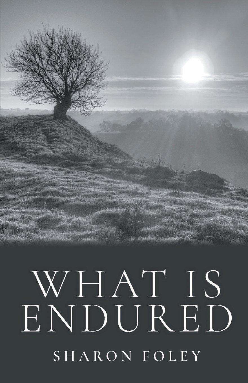 What is Endured pdf epub