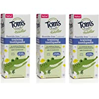 3-Count Toms of Maine Toddlers 1.75 Ounce Fluoride-Free Natural Toothpaste (Mild Fruit)