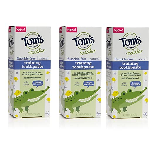 Tom S Of Maine Natural Fluoride Free Children S Training Toothpaste