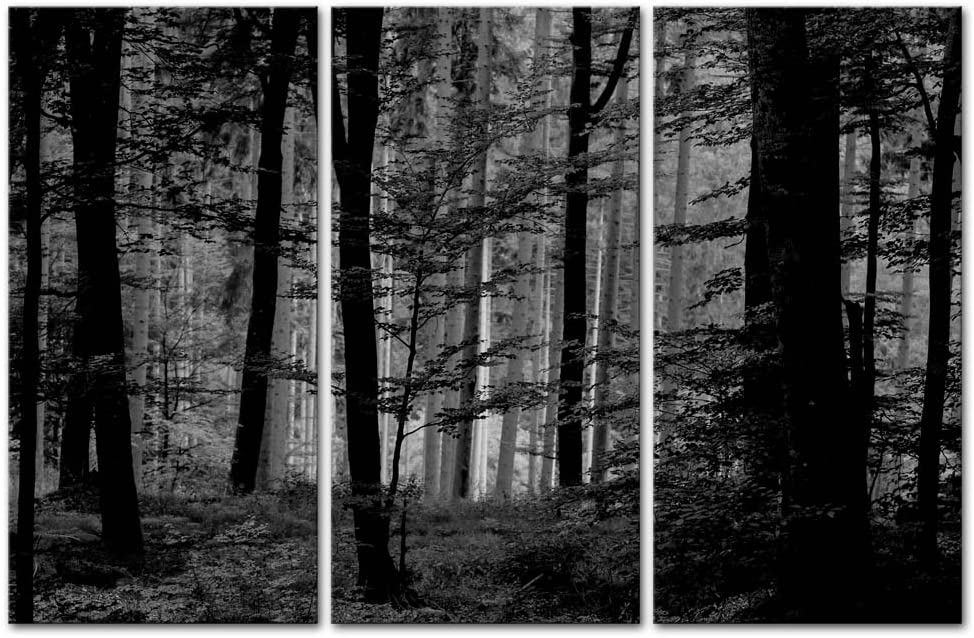 So Crazy Art- Black and White Wall Art Decor Lush Wood Forest Canvas Pictures Artwork 3 Panel Nature Landscape Painting Prints for Home Living Dining Room Kitchen