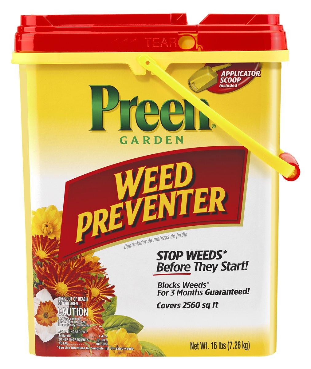Best Dandelion Killer Spray What S The Best Weed Killer Solution To Buy
