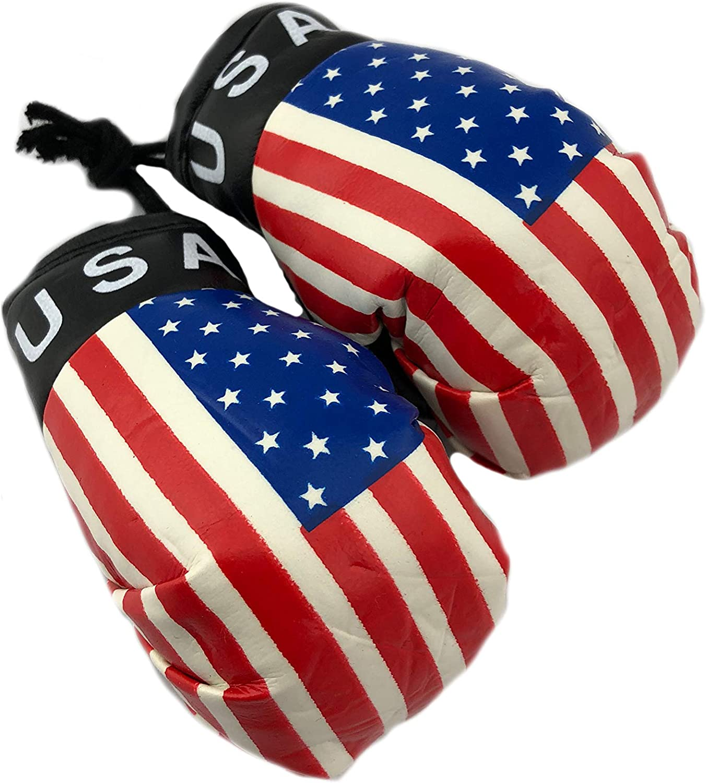 USA Mini Boxing Gloves Car Mirror Keyring