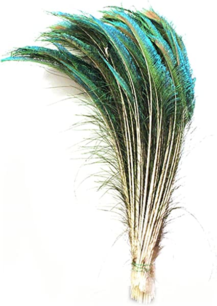 Peacock Sword Feathers Natural Colour