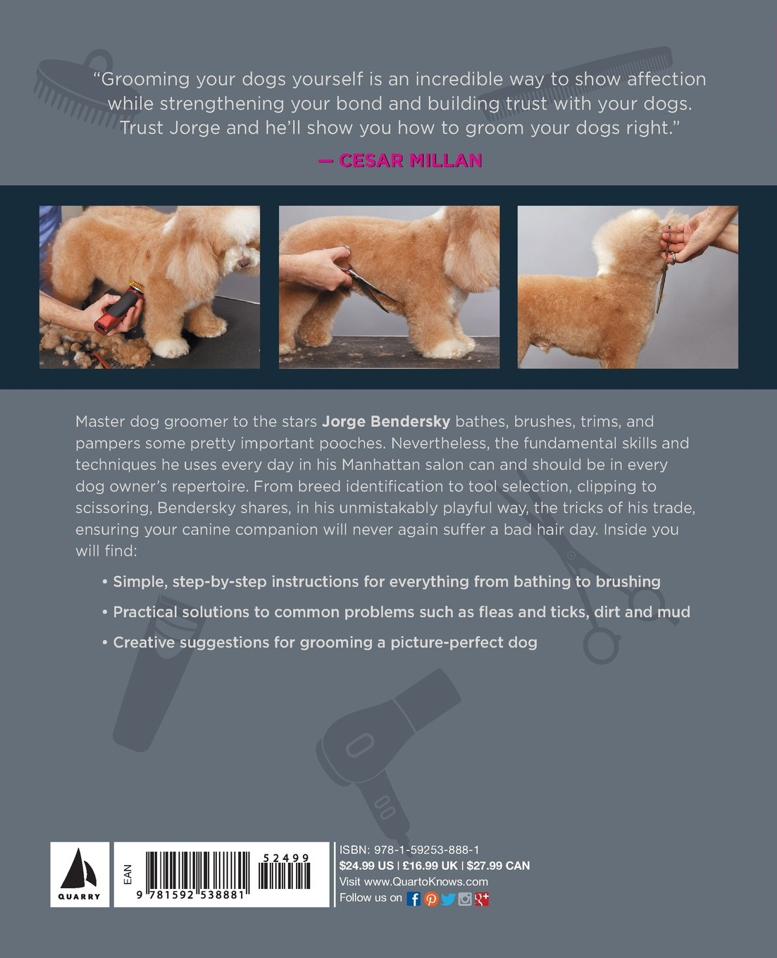 Diy dog grooming from puppy cuts to best in show everything you diy dog grooming from puppy cuts to best in show everything you need to know step by step jorge bendersky cesar milan 0080665010460 amazon books solutioingenieria Images