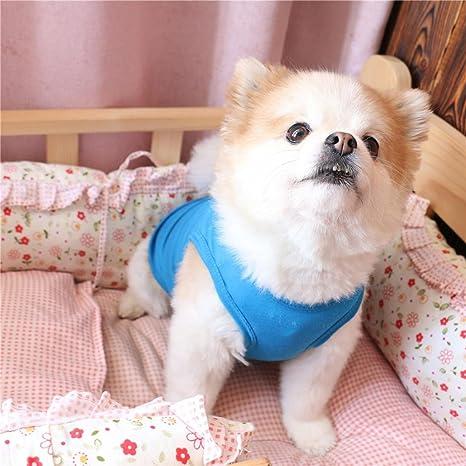 Y56 ❤ Primavera y Verano nette perro ropa América ...